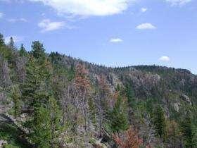 Deer Ridge, Rocky Mountain National Park