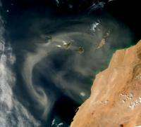 Dust plays larger than expected role in determining Atlantic temperature