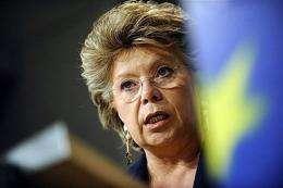 EU Information, Society and Media commissioner Viviane Reding