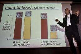 For economic success, channel your inner bonobo