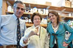 Gene therapy improves vision