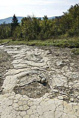 Giant dinosaur footprints site discovered in April