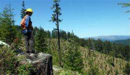 Ground zero in timber wars shows signs of peace (AP)