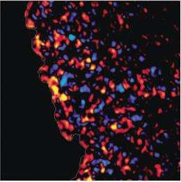 Cooperative forces boost collective mobility of cells