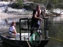 New gov't study shows mercury in fish widespread (AP)