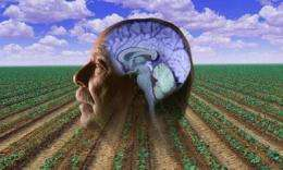 Pesticide exposure found to increase risk of Parkinson's disease