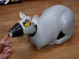 Rat-shaped robot