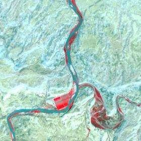Satellite View, Before Tamarisk Defoliation