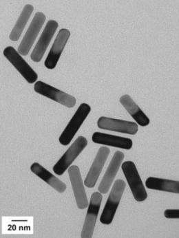 Targeting tumors using tiny gold particles