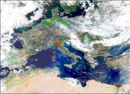 The first global map of ammonia emissions measured from space