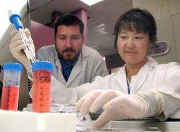 UCSB, UCL scientists rescue visual function in rats using induced pluripotent stem cells