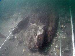 A picture from Ryukyu University professor Yoshifumi Ikeda shows a wreck believed to be an invading Mongolian ship