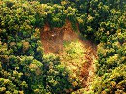 Landslides: How rainfall dried up Panama's drinking water