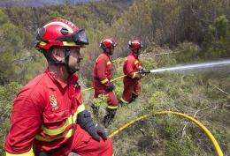 Members of the Military Emergency Unit (UME) try to extinguish a fire at the Serra de  Monar