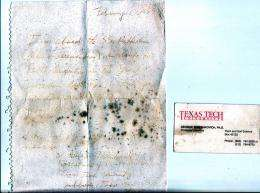 Message in a Bottle: Professor's Letter Surfaces 14 Years Later