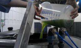 Pilot plant cleans waste water and creates fuel