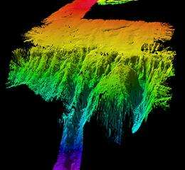 Sunken islands could cause tectonic shift in Gondwana story