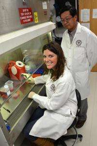 Veterinary researchers discover first US strains of hepatitis E virus from rabbits