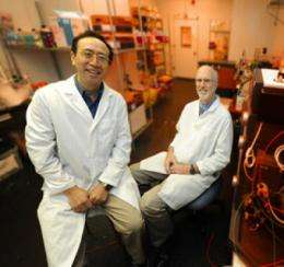 Scientists may be able to double efficacy of radiation therapy