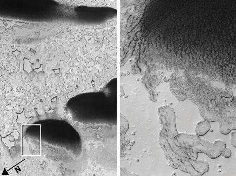 Dry ice lake suggests Mars once had a 'Dust Bowl' (Update)