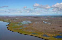 Striking ecological impact on Canada's Arctic coastline linked to global climate change