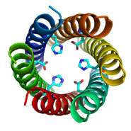New protein structure expands nature's repertoire of biomolecules