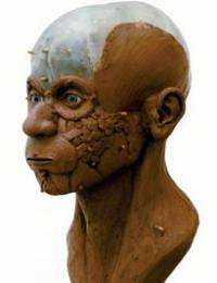 Face-to-face with an ancient human
