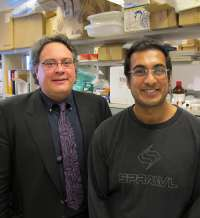 Researchers move closer to a cure for a deadly cardiovascular disease
