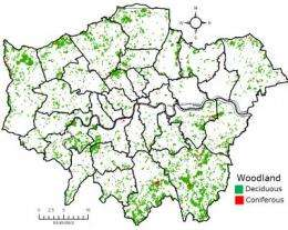 New study shows how trees clean the air in London