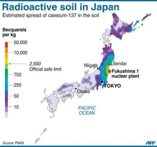 Graphic showing the distribution of radioactive caesium in the soil across Japan