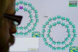 A European Organization for Nuclear Research (CERN) scientist checks a monitor