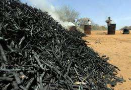 A man makes charcoal from twigs pruned from local forest during a controlled charcoal-making excercise at Maungu, Kenya