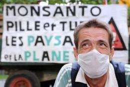 An activist demonstrates against genetically-modified crops in France