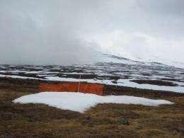 Arctic snow harbors deadly assassin
