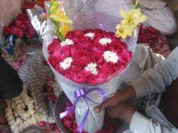 A rosy future for Pakistan's cut flower industry