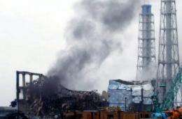 A Tokyo Electric Power Co picture from March of reactor three at the crippled Fukushima Dai-ichi nuclear power plant