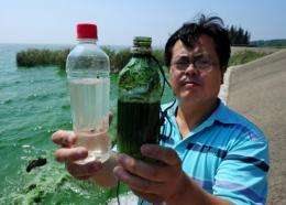China's economic growth had left up to 40% of its rivers badly polluted