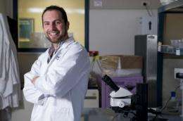 Crickets show path to chirpier sperm