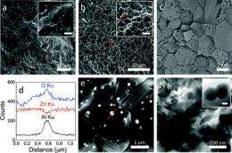 Engineers 'cook' promising new heat-harvesting nanomaterials in microwave oven