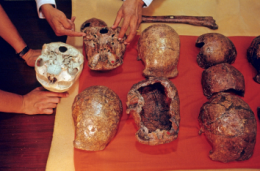 Finding showing human ancestor older than previously thought offers new insights into evolution