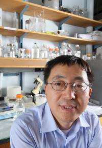 Gene may be good target for tough-to-kill prostate cancer cells