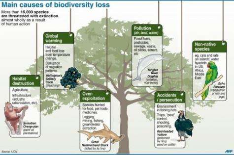 """In the EU, around one in four species are considered """"threatened with extinction"""""""