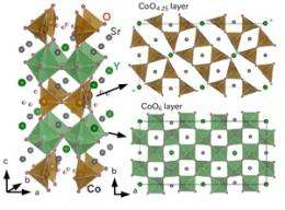 Long-time mystery in Cobalt oxides