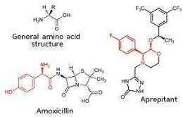 Organic chemistry: Amino acids made easy