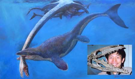 Prehistoric sea lizard pulled from skeletons in closet