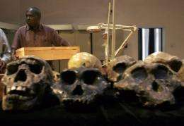 Senior Palaeontologist at the National Museum of Kenya, Frederick Kyalo Manthi, carries the remains of a homo erectus