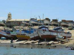 Study shows small-scale fisheries' impact on marine life