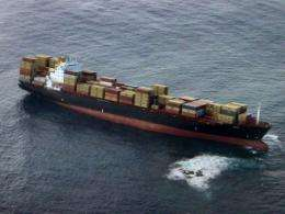 The first dead birds have been found in oil that leaked from a container ship stranded off New Zealand