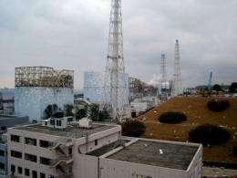 The four reactors of the Fukushima Dai-ichi (no.1) nuclear power plant