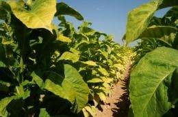The measures include crop diversity and and setting aside 7% for plants, animals and insects